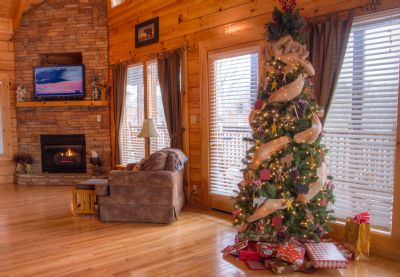 Enjoy your family holidays at Cozy Bear Overlook